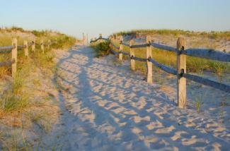 Fenced sandy path to beach at Island Beach State Park of NJ at Sunset